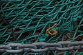 Pêche DSC03063.JPG