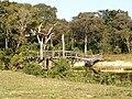 PICT0030-Brücke Pantanal (R.Graf).jpg