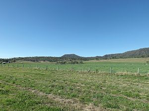 Christmas Creek, Queensland - Fields along Christmas Creek Road, 2014