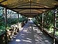 Paignton , Paignton Zoo, Pathway - geograph.org.uk - 1485119.jpg