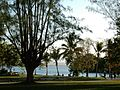 Park by River Mouth (23625687906).jpg