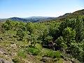 Parque Natural de Montesinho Porto Furado trail (5732595711).jpg