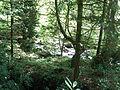 Passage de la Cance près de la Grande cascade.JPG