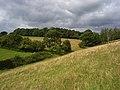 Pasture, Prestwood - geograph.org.uk - 935896.jpg