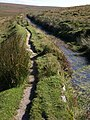 Path by Devonport Leat - geograph.org.uk - 1501204.jpg