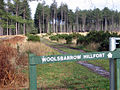 Path to Woolsbarrow Hill Fort, Wareham Forest - geograph.org.uk - 160915.jpg