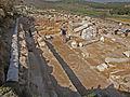 Peltae in Tzafririm Mosaic, Israel (3) (5382049314).jpg