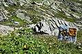 Percorsi di montagna sul Colle del Gran San Bernardo.jpg