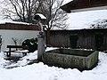 Pettnau-Brunnen-Maria-Immaculata.jpg