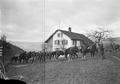 Pferde der Meldeläufer - CH-BAR - 3239303.tif