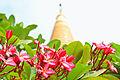 Phapathomjadee Pagoda 02.jpg