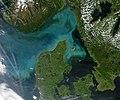 Phytoplankton.jpg