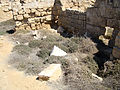 Pilgrimage Center at Abu Mena (VIII).jpg