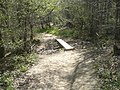 Plank bridge by Sheepwash Ghyll - geograph.org.uk - 407199.jpg