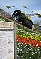 Plants and Pollinators exhibit, Eden Project - geograph.org.uk - 785382.jpg