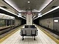 Platform of Ebie Station.jpg
