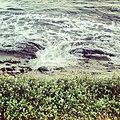 Playa Pampatar, Isla de Margarita.JPG