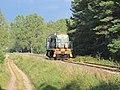 Podlaskie - Narewka - Zabłotczyzna - LK59 - SM48-055 20110910 03.JPG