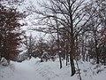 Poggio della Fornace 07-02-2012 - panoramio.jpg