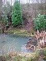 Pond, Jarvis Brook Country Park - geograph.org.uk - 316562.jpg