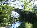 Pont Medieval d'Oix (maig 2011) - panoramio.jpg