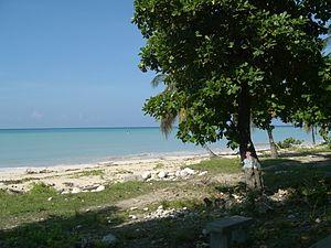Port-Salut - Beach at Port-Salut (2005)