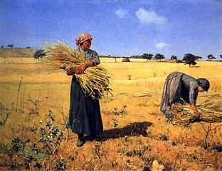 Harvest - Harvesters