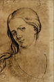Portrait of a Young Woman - Joerg Breu the Elder.png