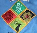 Progressive scheme badges (Scouting Ireland).jpg