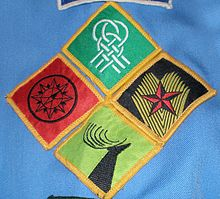 Scouts (Scouting Ireland) - Wikipedia