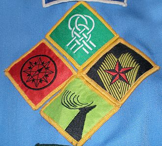 """Chief Scout Award (Scouting Ireland) - The Scouting Ireland progressive badge scheme. """"The pathway to the Chief Scout's Award"""""""