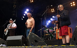Pertti Kurikan Nimipäivät - The band performing at Provinssirock in 2013