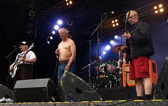 Pertti Kurikan Nimipäivät - The band performing at Provinssirock in 2013