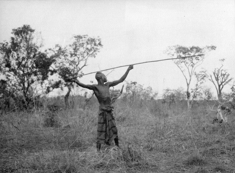 File:Publicerad i Träskfolket fig.82, Kap-Kairo expeditionen. Bangweulusjön. Zambia - SMVK - 000472.tif