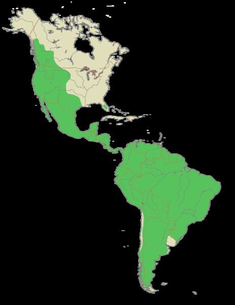 Jaguar Range Map North America Jaguar wiring diagram