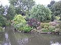 Queen Mary's Gardens P6110024.JPG