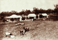 Queensland State Archives 2261 McLeans Station Redford 1897.png
