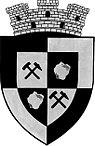 ROU SB Ocna Sibiului CoA.jpg