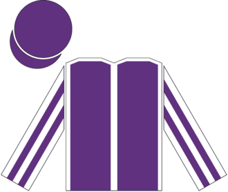 So You Think - Racing silks of Derrick Smith