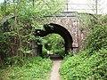 Railway Arch near Butt's Green - geograph.org.uk - 423342.jpg