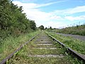 Railway Track. Eighton Banks. - geograph.org.uk - 513181.jpg