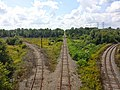 Railway tracks in Ottawa 2014.jpg