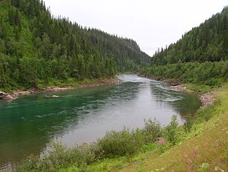 Scandinavian and Russian taiga - There are many rivers and lakes in the Taiga. Norwegian closed-canopy boreal forest at the Arctic Circle in Rana.