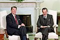 Reagan and Alfonsín in the White House 02.jpg