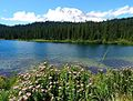 Reflection Lake 2015 July.jpeg