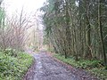 Restricted byway near Stony Hill - geograph.org.uk - 1201998.jpg