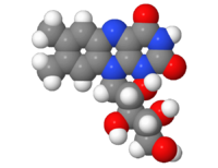 Riboflavin-3d.png