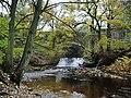 River Ryburn - geograph.org.uk - 1040864.jpg