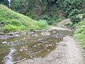 River in Bandarban's hill.JPG