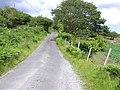Road at Milltown - geograph.org.uk - 1368676.jpg